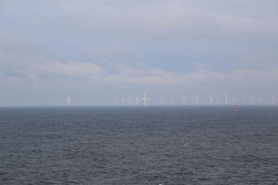 Wind farm Amsterdam